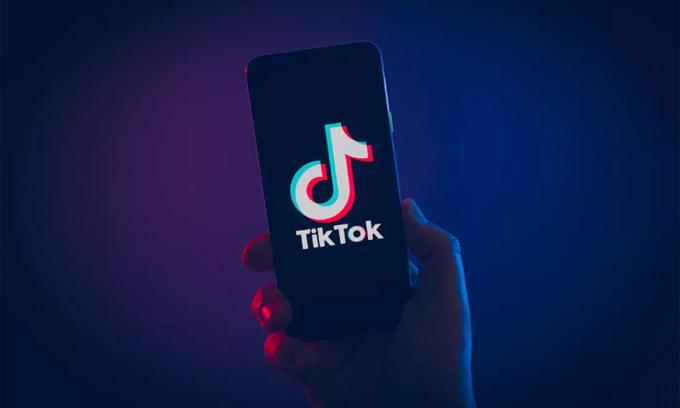 Ứng dụng tranh cử của Trump đang bị cộng đồng TikTok tấn công. Ảnh: CNet.