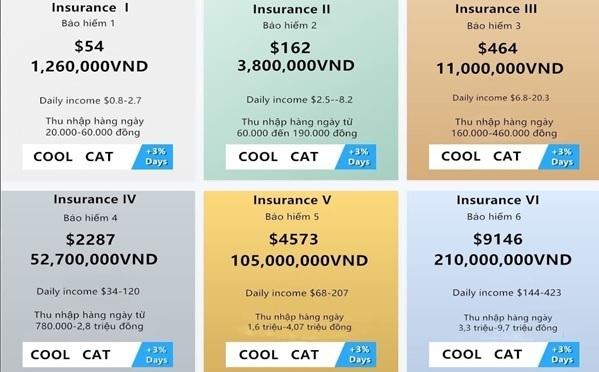 Mức hưởng lợi từ Coolcat theo cấp độ bảo hiểm tham gia.